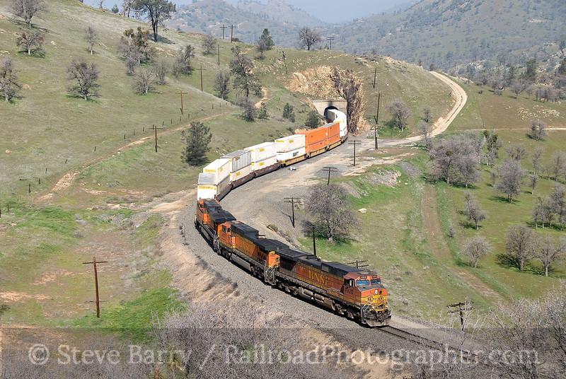 Photo 1458<br /> BNSF Railway; Walong, California<br /> March 12, 2009