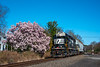 Norfolk Southern; Stanton Station NJ; 4/6/20