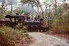 Pine Creek; Allaire State Park NJ; 5/1977