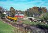 Photo 5486<br /> New York, Susquehanna & Western<br /> Baird's Farm, Warwick, New York<br /> November 1990