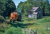 Batten Kill; Shushan NY; 9/2003