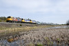 Photo 1147<br /> VIA Rail Canada; Rutter, Ontario<br /> May 13, 2008