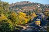 Photo 5345<br /> Union Pacific<br /> Mosier, Oregon<br /> October 19, 2018