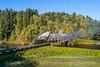 Photo 5326<br /> Oregon Coast Scenic<br /> Mohler, Oregon<br /> October 17, 2018