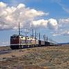 BMLP2004040006 - Black Mesa & Lake Powell, Cow Springs, AZ, 4-2004