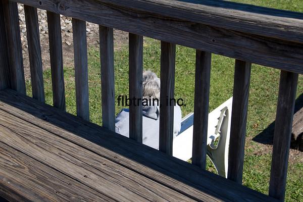NS2012101090 - Norfolk Southern, Irondale, AL, 10/2012