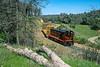 Amador Foothills; Sunnybrook CA; 3/2002
