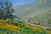 Union Pacific; Caliente CA; 3/2003