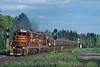 Photo 0242<br /> Duluth, Missabe & Iron Range; Iron Junction, Minnesota<br /> July 2004