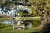 Photo 1024<br /> Soo Line 1003; Fairwater, Wisconsin<br /> October 20, 2007