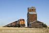 Photo 1337<br /> BNSF Railway; Lothair, Montana<br /> September 9, 2008