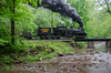 Photo 2701<br /> Cass Scenic Railroad; Cass, West Virginia<br /> May 19, 2013