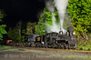 Photo 2699<br /> Cass Scenic Railroad; Cass, West Virginia<br /> May 18, 2013