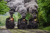 Photo 2700<br /> Cass Scenic Railroad; Cass, West Virginia<br /> May 19, 2013