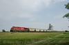 Photo 2776<br /> Canadian Pacific; Bulyea, Saskatchewan<br /> August 26, 2013