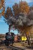 Nevada State Railroad Museum; Carson City NV; 11/16/19