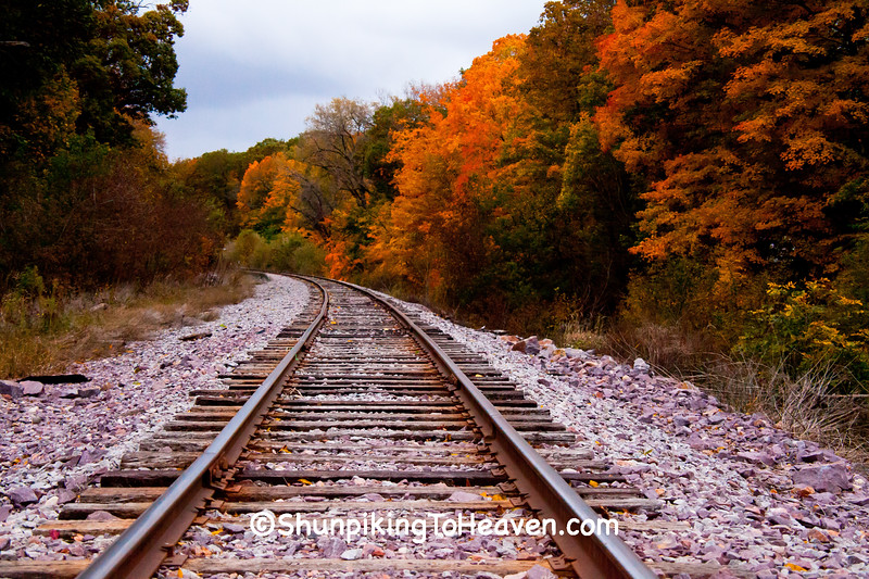 Fall Color Along the Railroad Tracks, Sauk County, Wisconsin