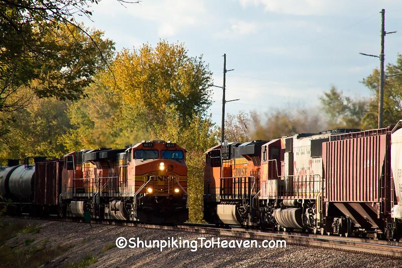 Two Diesel Trains, Buffalo County, Wisconsin