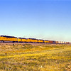 UP1976070015 - Union Pacific, Laramie, WY, 7-1976