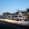 AM2000010050 - Amtrak, Lorton, VA, 1/2000