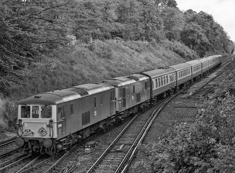 """73140 and 73114 at Virginia Water with the Waterloo - Reading leg of the Waterloo - Crewe """"Midland Executive"""" organised by R.E.S.L. on 2nd June 1984. Scanned Negative."""