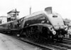 60007 Sir Nigel Gresley with a RCTS special unknown location