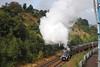60009 Union of South Africa Scarborough Flyer Woodhouse Lane Bridge 14/9/12