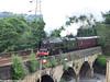 46233 Duchess of Sutherland Scarborough Flyer evening return Rastrick (Martin Wood) 1