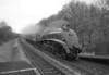 60007 Sir Nigel Gresley 26-11-08 light engine movement (7)