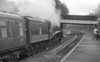 60007 Sir Nigel Gresley 26-11-08 light engine movement (09)