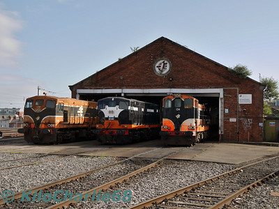 RPSI: Heritage Diesel Display at Connolly Shed.