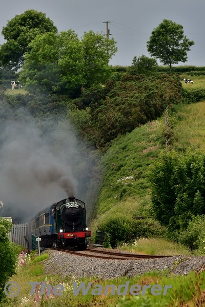 461 emerges from Ferrycarrig Tunnel with the Emerald Isle Explorer. Thurs 17.06.16