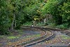 Upper end of the yard with the running line to the left and depot access line to the right. Sun 24.09.17