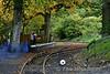 Platform at Stradbally. Sun 24.09.17