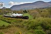 """No. 4 approaches Yellow Quarry Level Crossing on the outskirts of Killarney with the 0835 Connolly - Tralee """"Cork & Kerry railtour"""". No. 4 took over from No. 85 at Mallow. Sat 12.05.18"""