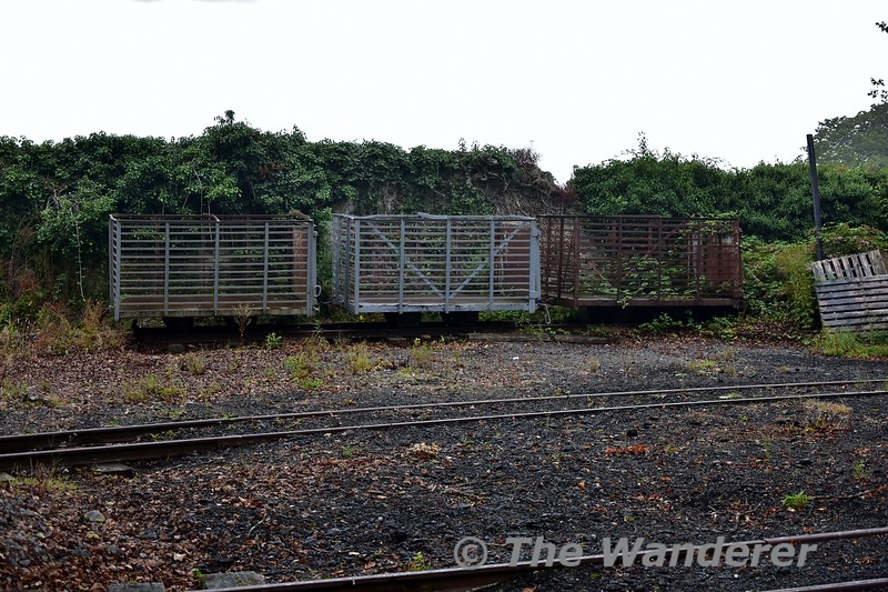 Recent arrivals at Stradbally include these former turf wagons from Attymon. Sun 04.08.19