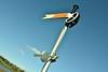 Semaphore Signal on the railway route. Sun 27.10.19