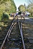 To the Mallow side of Kilmeaden Station a short stub runs down to the maintenance shed. Sun 27.10.19
