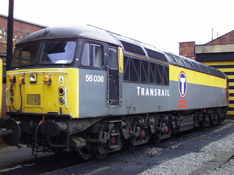 56036 in 'Dutch Transrail' livery at Doncaster on Boxing Day 1998