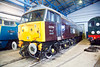 "47798 in RES ""Royal"" livery  flanked by D1023 & D8000 in York NRM on February 1st 2015"