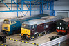 D1023 47798 & D8000 at the NRM 1st February 2015