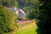 68034 - Kirkham Abbey - 31/7/2020