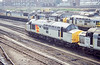 37244 - Cardiff Canton 26/7/1991