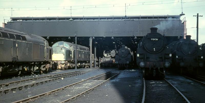 D221 D344 48491 73035 & 73136 - Patricroft - 28/1/1968