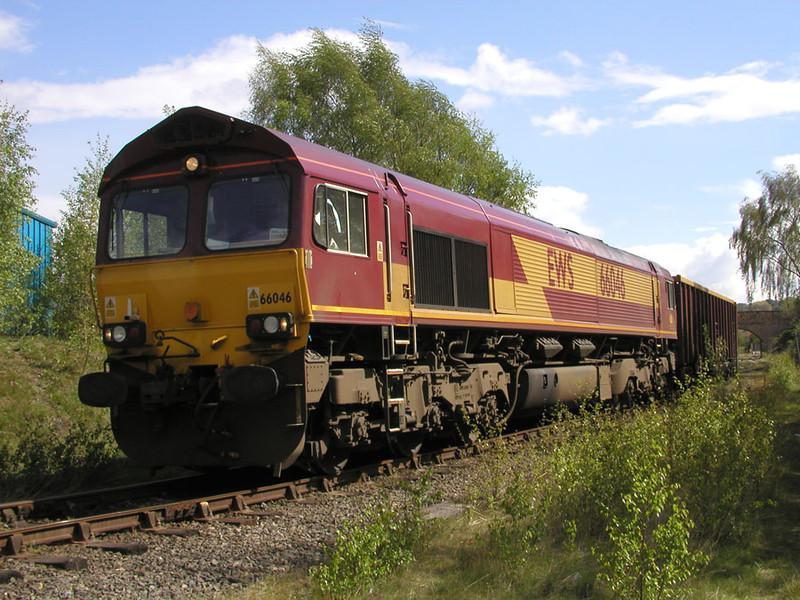 66046-sunbathes-at-dewsbury