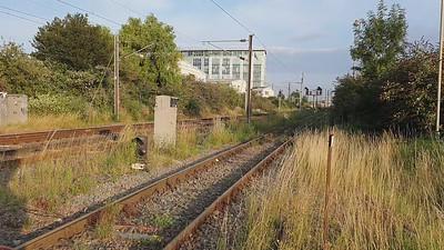 66601 passes Mitre Bridge Jct at 1934/6V38 Hothfield to Stoke Gifford   29.07.21