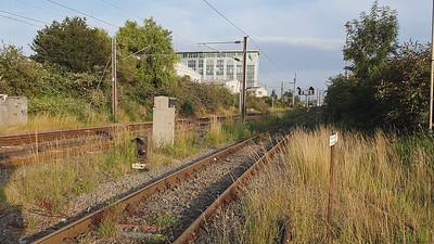 88001_68006 pass Mitre  Bridge Jct at 1929/6M95 Dungeness to Crewe Coal Yard   29.07.21
