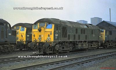 Class 24's in Scotland