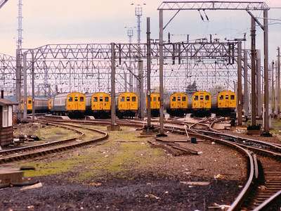 A line up of class 302s wait for Monday morning in Shoeburyness sidings during Spring 1986