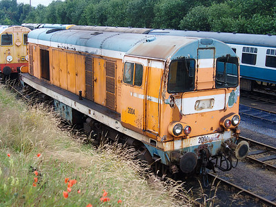 2004 (20228)poses for the camera at Barrow Hill on the 15th July 2007